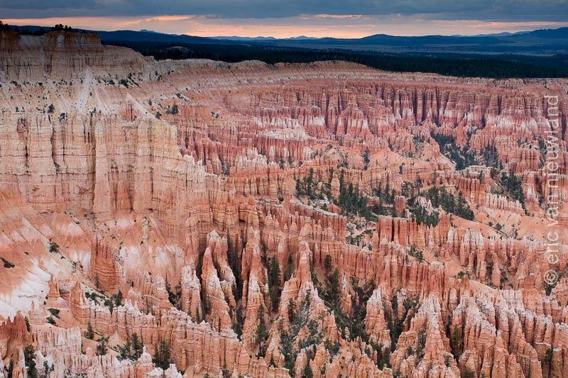 bryce NP