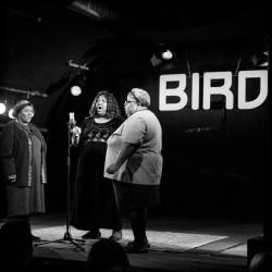 bird expo foto  eric van nieuwland 201329